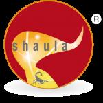 Shaula – Computer, Telefonia, Web